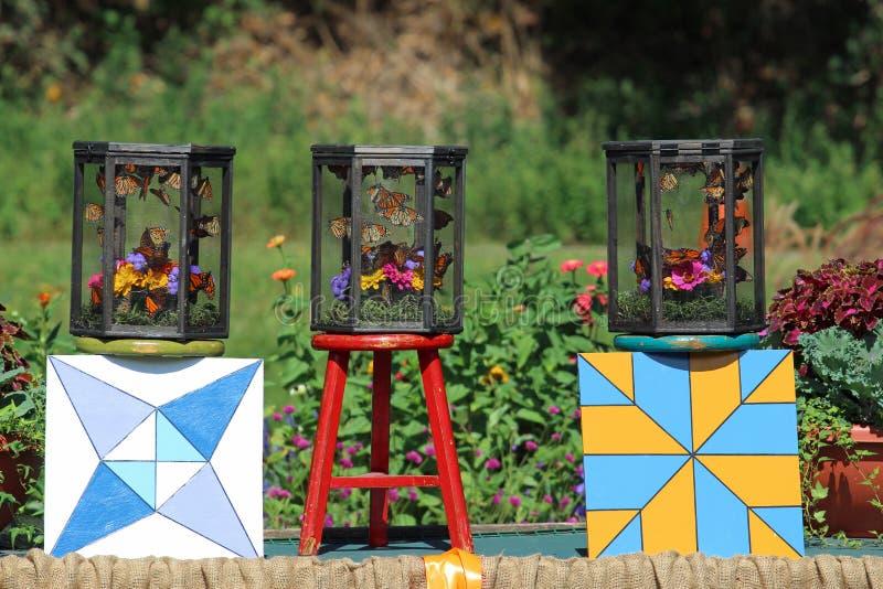 Farfalle di monarca in gabbie fotografie stock libere da diritti