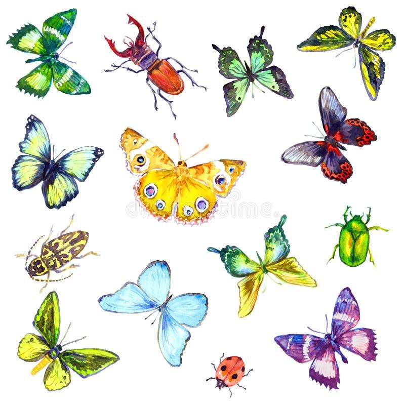 Farfalle e insetti senza cuciture dell'acquerello del modello illustrazione vettoriale