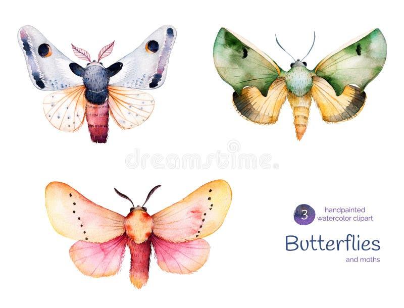 Farfalle e lepidotteri illustrazione vettoriale