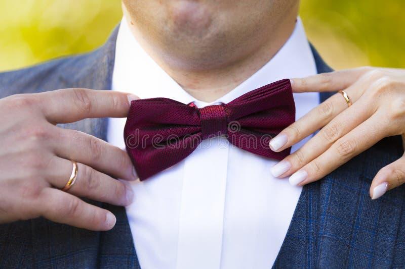 Farfallino marrone rossiccio o rosso con le mani della sposa e dello sposo immagine stock libera da diritti