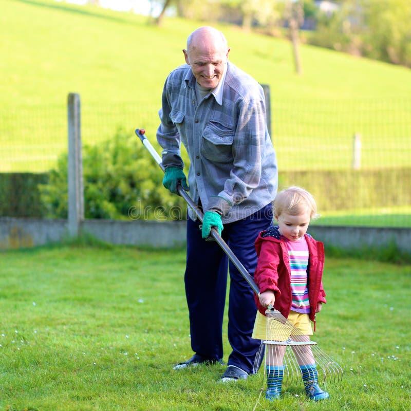Farfar och barnbarn som arbetar i trädgården royaltyfri bild