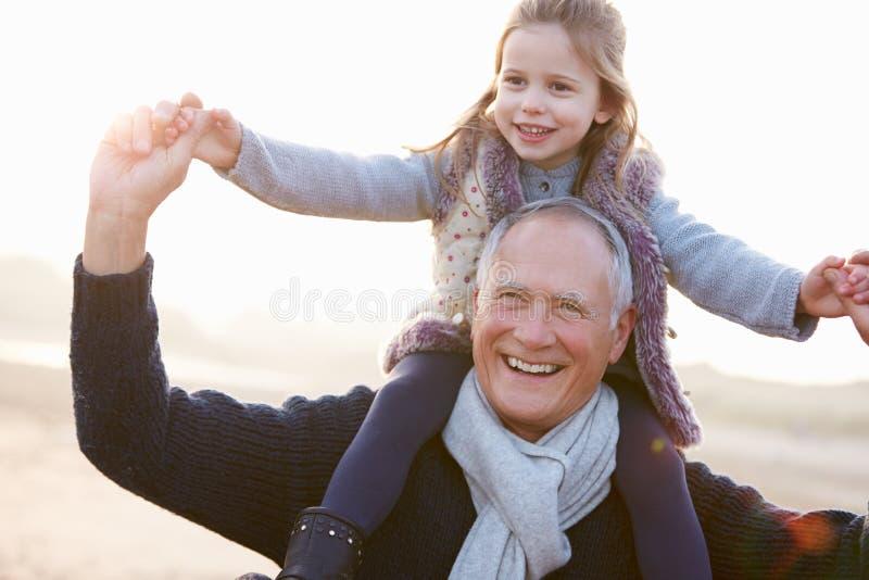 Farfar och sondotter som går på vinterstranden arkivfoto