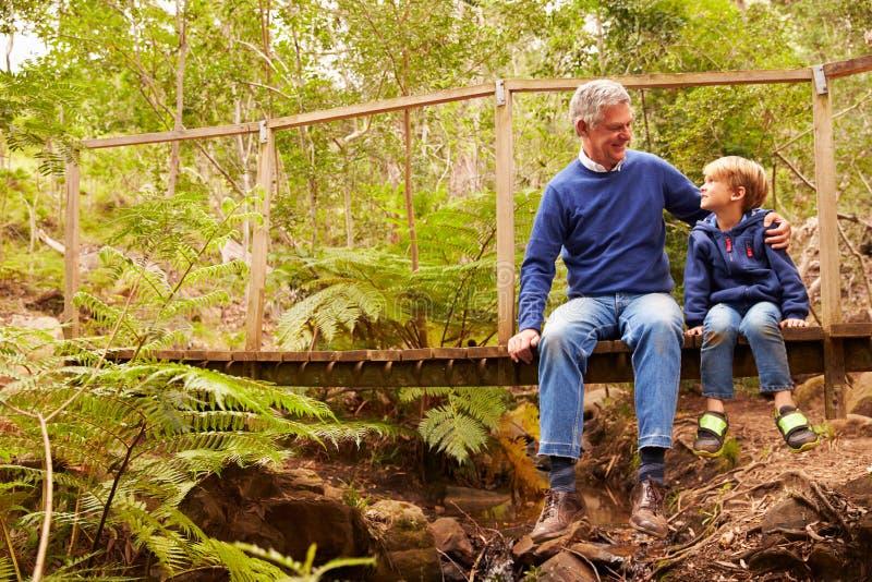 Farfarsammanträde med sonsonen på en bro i en skog arkivbild