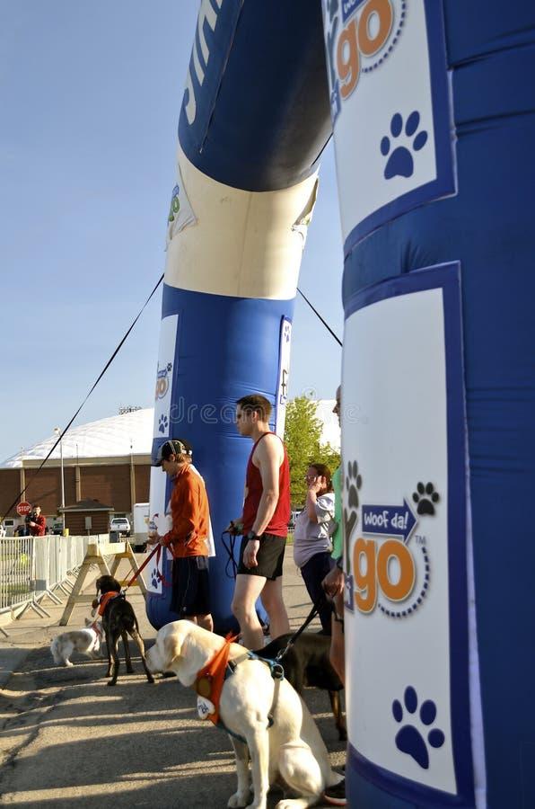 Fargo Marathon Dog Race foto de stock
