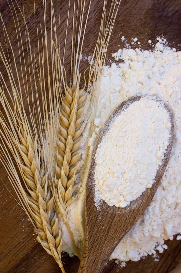 Farina bianca con le orecchie del frumento fotografia stock libera da diritti