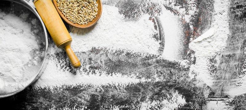 Farina con un setaccio, il grano ed il matterello immagine stock libera da diritti