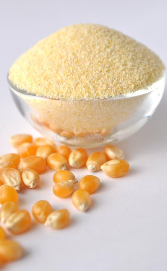 Farina di mais e grani su fondo bianco Isolato su bianco Polvere gialla in una ciotola di vetro Farina senza glutine alternativa fotografie stock