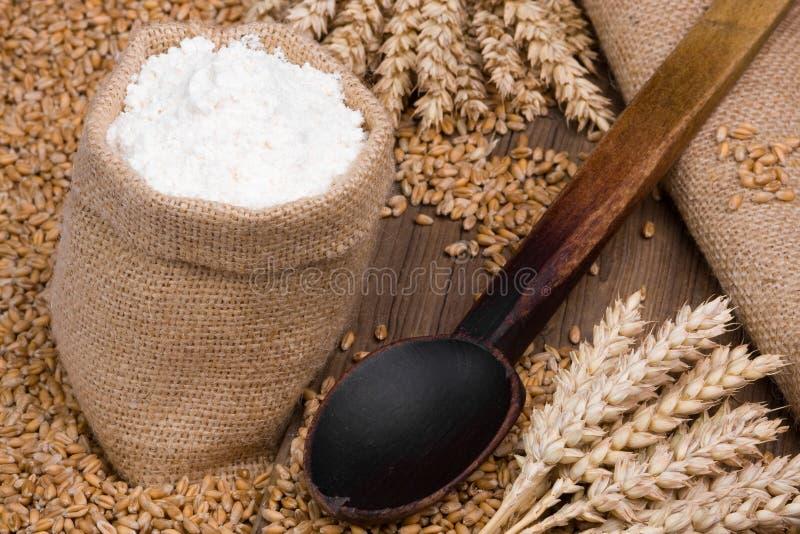 Farina e cereale fotografie stock libere da diritti