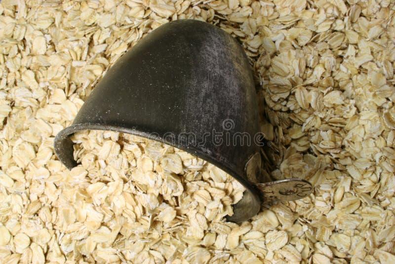 Farine d'avoine sèche avec la cuvette photographie stock libre de droits