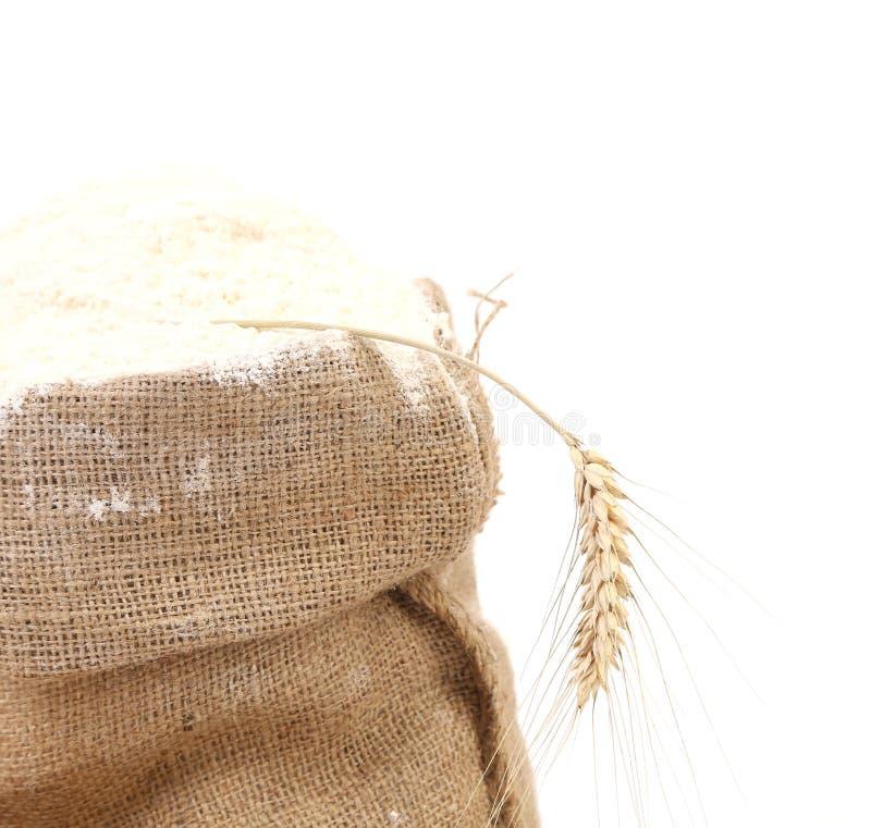 Farine entière dans le sac avec des oreilles de blé image stock