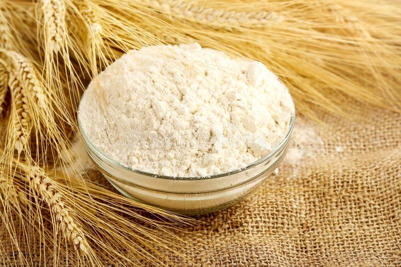 Farine et blé photo stock