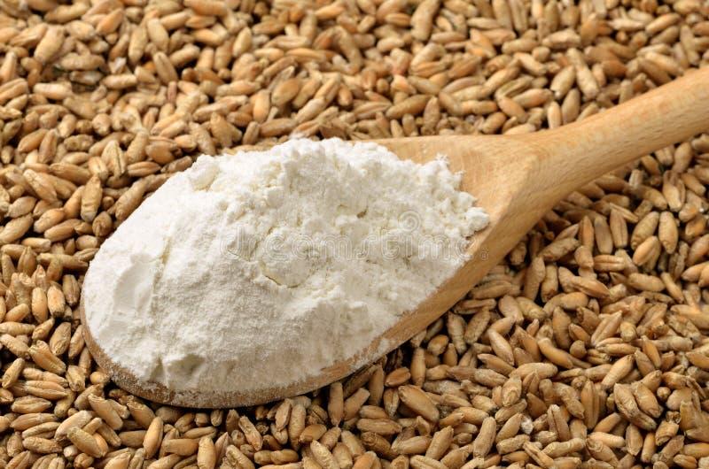 Farine et textures de blé photographie stock libre de droits