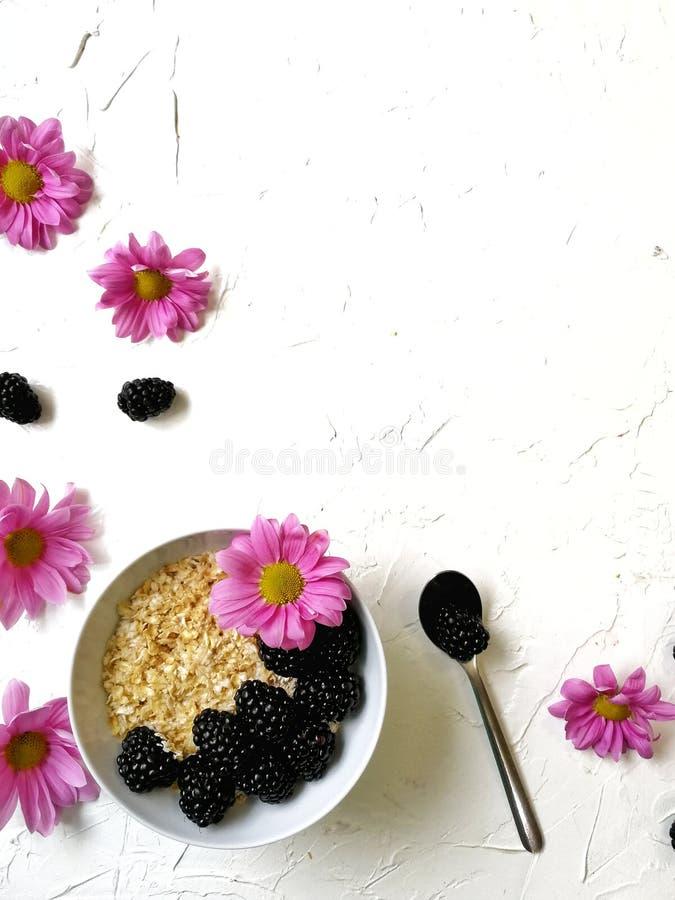 Farinha de aveia para o café da manhã com Blackberry e as flores no fundo branco imagens de stock royalty free