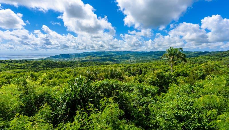 Farley Hill National Park sur l'île des Caraïbes des Barbade C'est une destination de paradis avec une plage et un turquoiuse bla photo libre de droits
