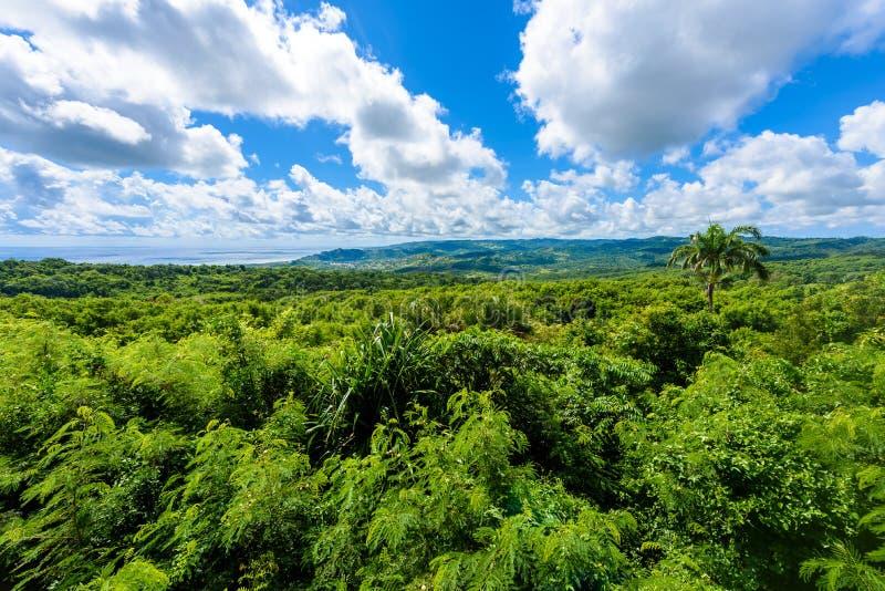 Farley Hill National Park sur l'?le des Cara?bes des Barbade C'est une destination de paradis avec une plage et un turquoiuse bla image stock