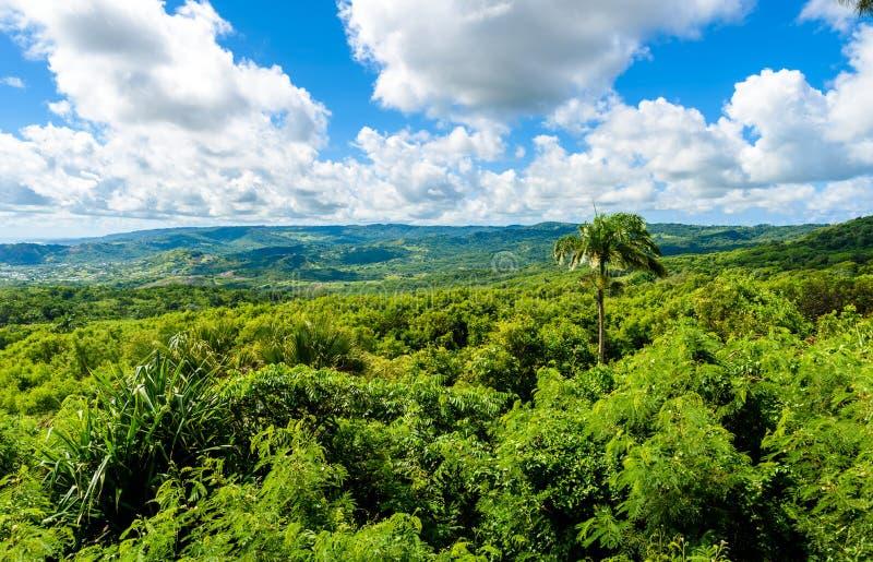 Farley Hill National Park sur l'?le des Cara?bes des Barbade C'est une destination de paradis avec une plage et un turquoiuse bla images libres de droits