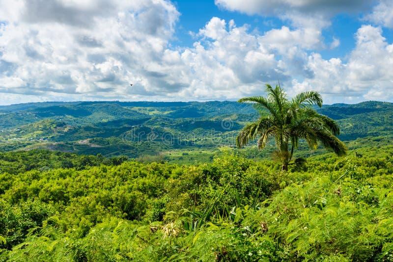 Farley Hill National Park sur l'?le des Cara?bes des Barbade C'est une destination de paradis avec une plage et un turquoiuse bla photo stock