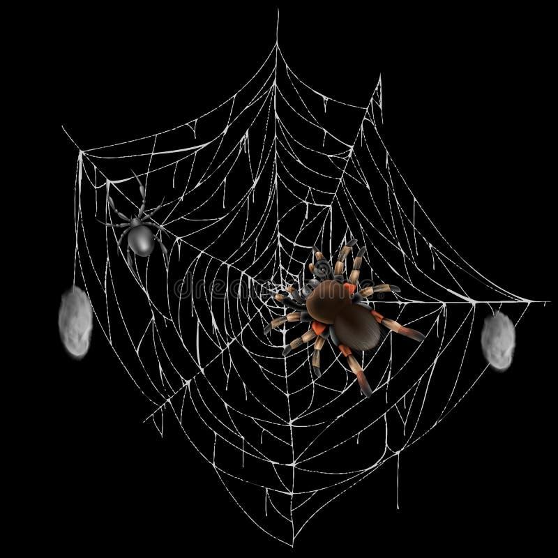 Farlig giftig spindel på realistisk vektor för rengöringsduk royaltyfri illustrationer