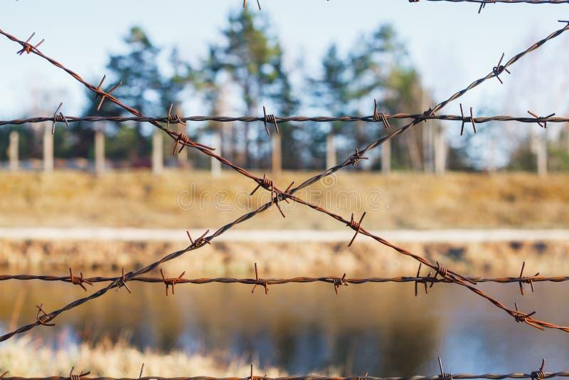 Farligt område som fäktas med taggtrådstaketet fotografering för bildbyråer