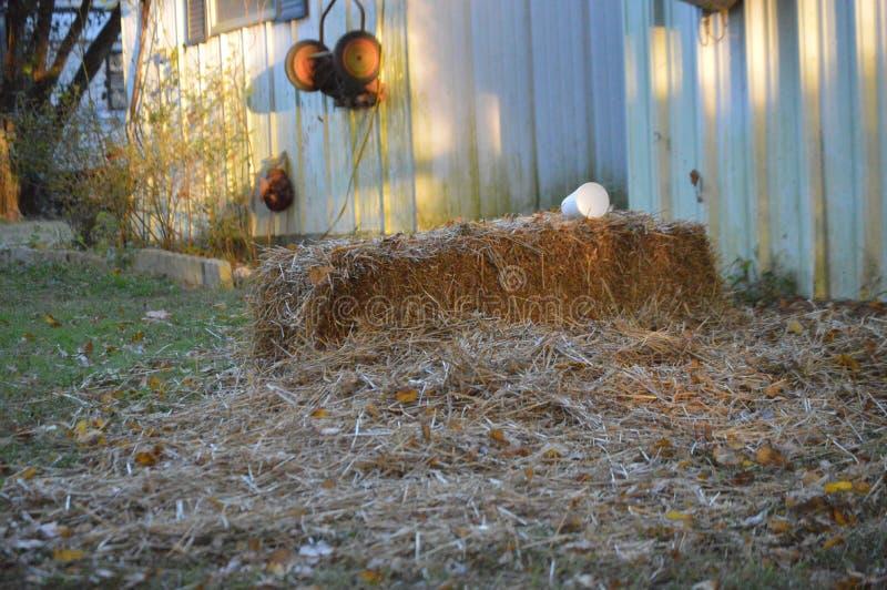 Farm4 lizenzfreies stockfoto