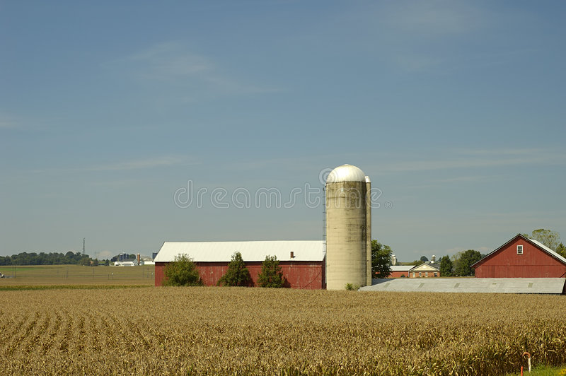 Farm royalty free stock photography