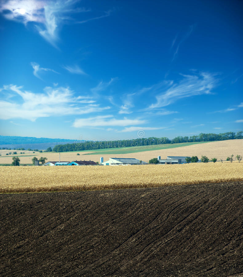 Download Farm stock image. Image of europa, morning, home, ludogorie - 26530523