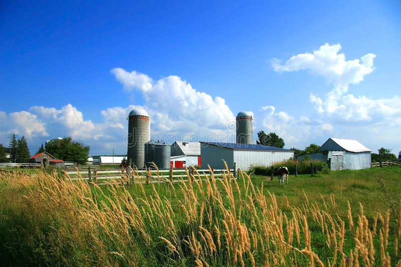 On the farm. Working farm in rural Quebec, Canada stock photography