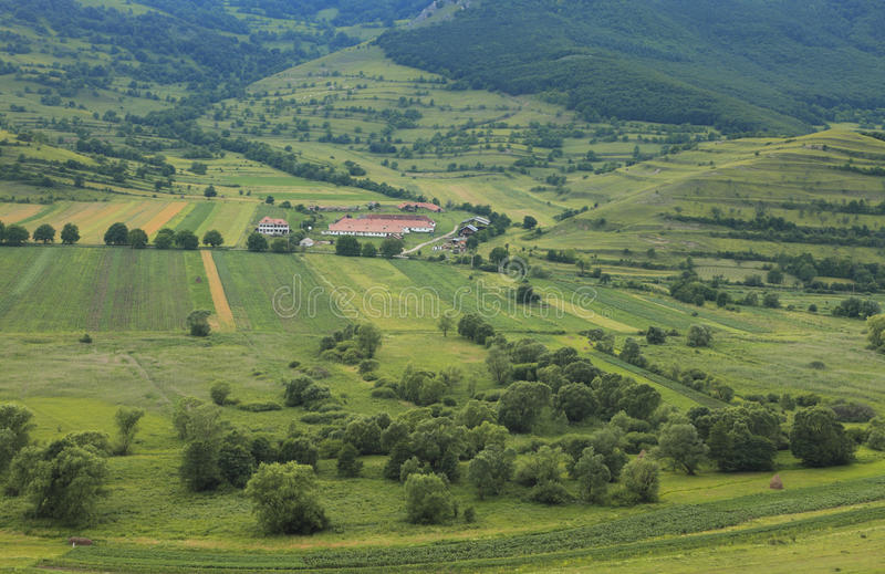 Download The farm stock image. Image of romania, produce, environment - 9989537