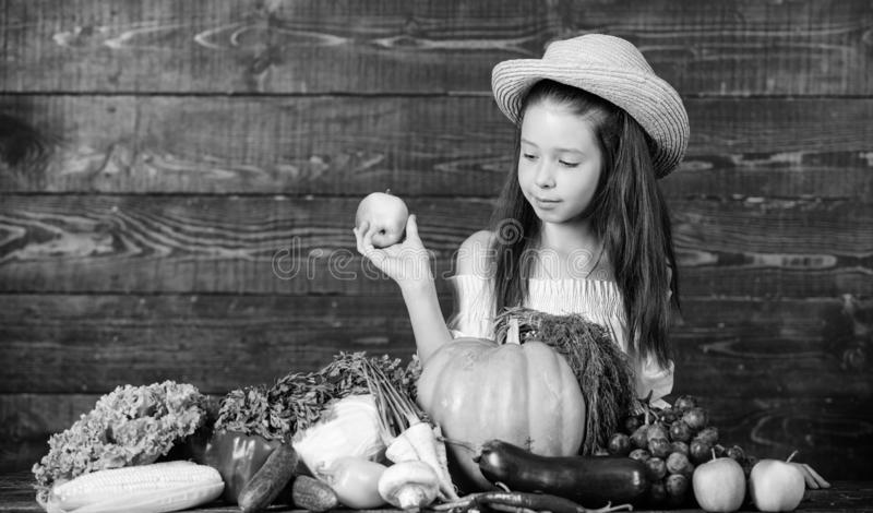Farm activities for kids. Girl kid farm market with fall harvest. Kid farmer with harvest wooden background. Family farm. Festival concept. Traditional autumnal stock photo