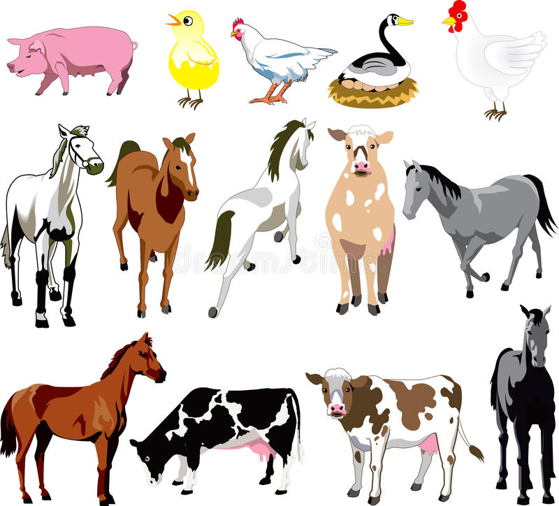 Download Farm Animals stock vector. Image of horse, chic, fourteen - 12270068
