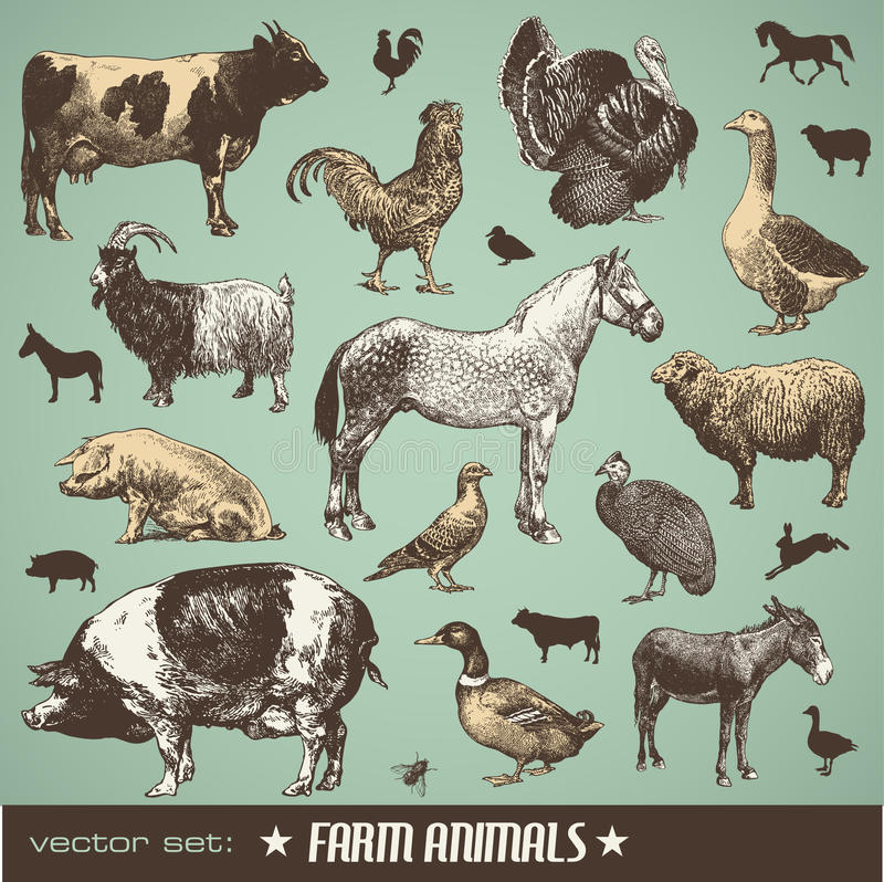 Free Farm Animals Stock Image - 15430401
