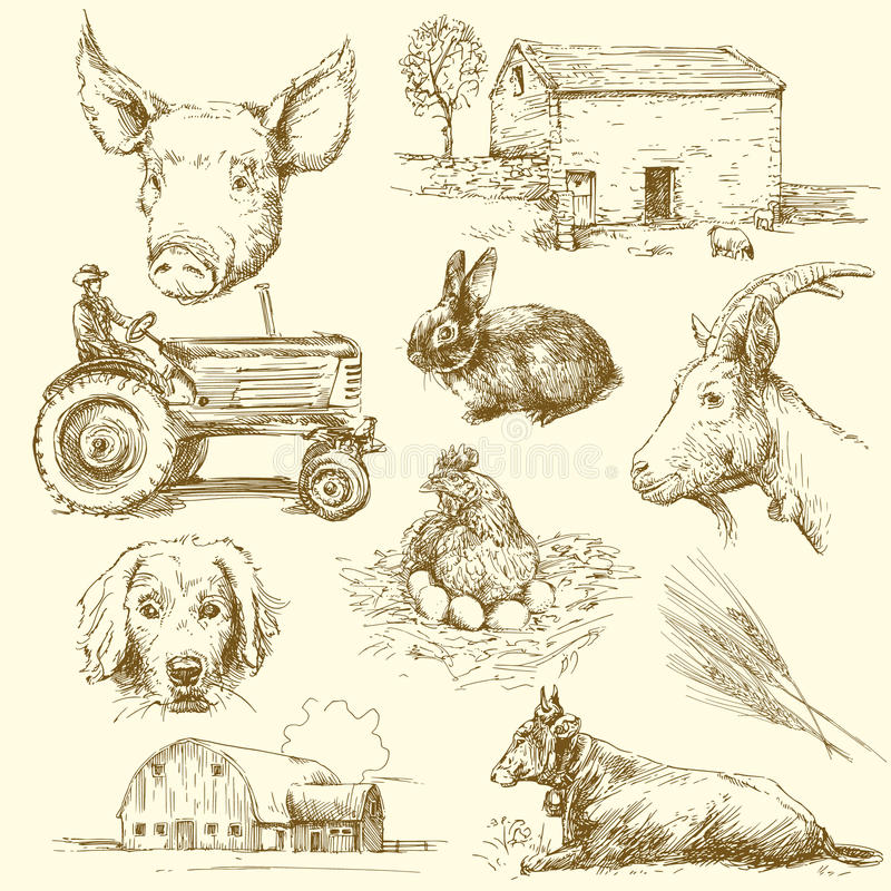 Farm animals. Hand drawn collection royalty free illustration