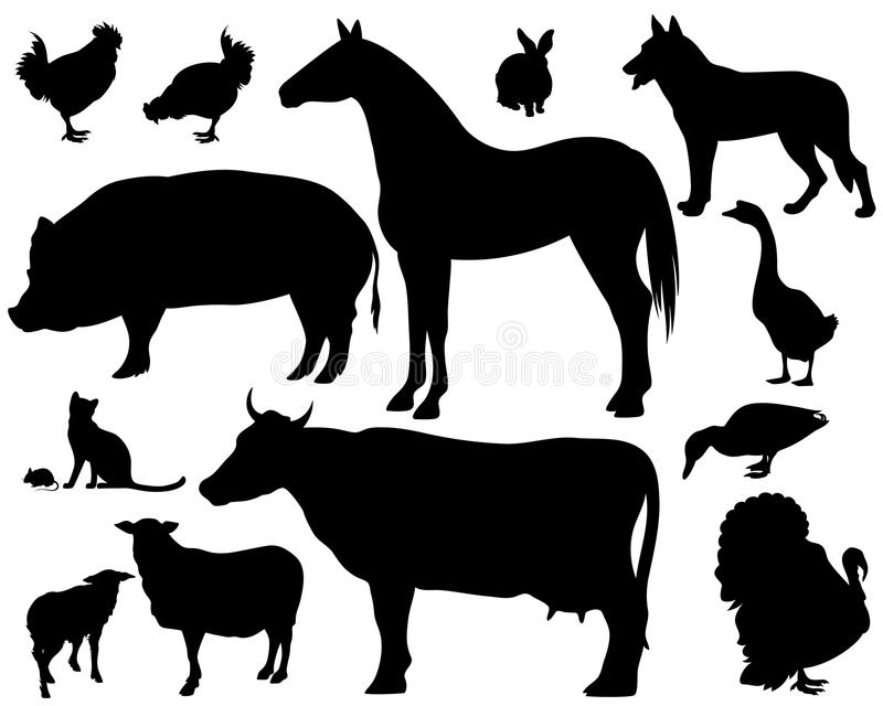 Farm animals. On the farm - set of fine black vector silhouettes over white