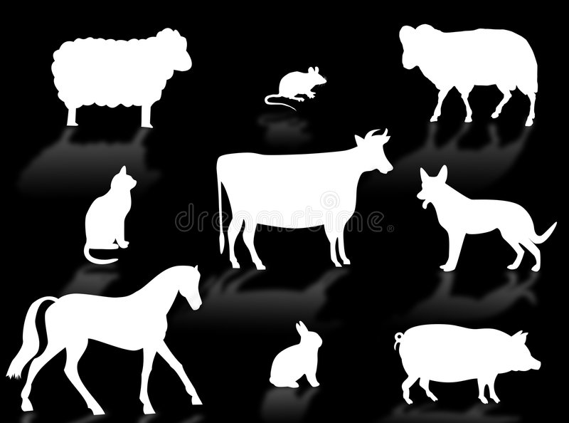 Farm animals. Silhouettes with shadows on a white background stock illustration