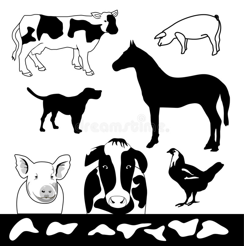 Download Farm Animals stock vector. Image of design, animals, hide - 6659596