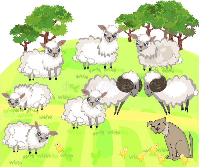 Farm animals. Flock of sheep and shepherd dog royalty free illustration