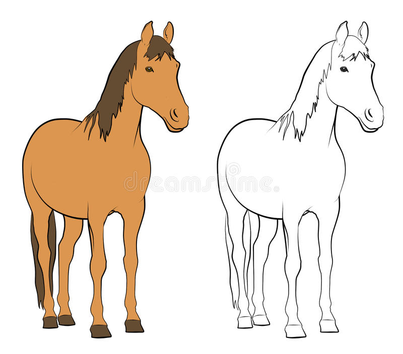Farm Animals - Horse. Line drawings of horse - Colored and Black and White stock illustration