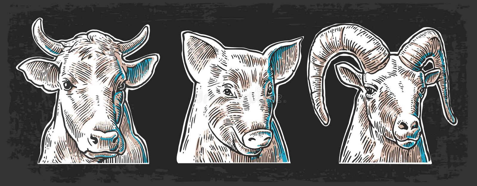 Farm animals icon set. Pig, cow and goat heads isolated on dark background. vector illustration
