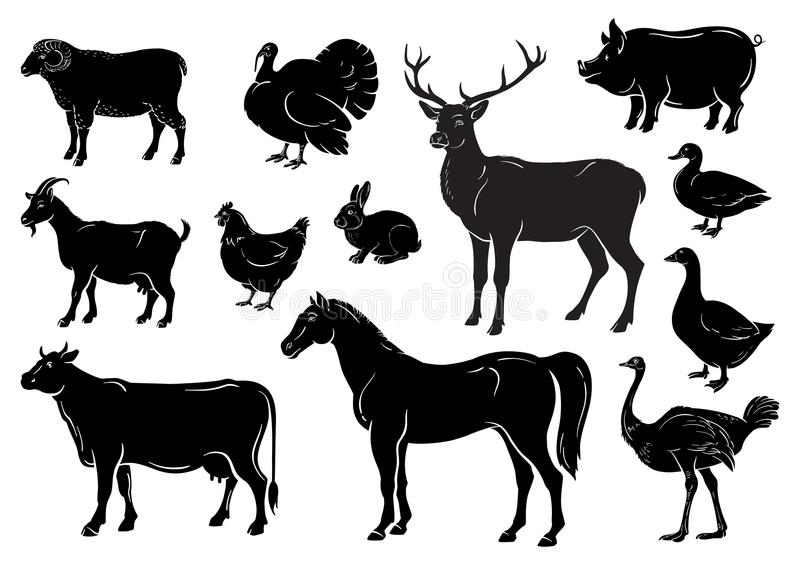 Farm animals icons set. Collection of labels with beautiful such as goat chicken pig boar duck goose horse cow Turkey. Hare ostrich deer butcher shop, steak vector illustration