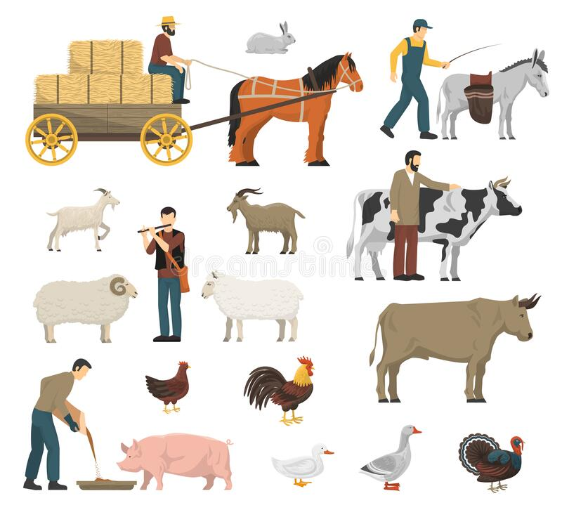 Farm Animals Set. With cow horse and hen flat isolated vector illustration royalty free illustration