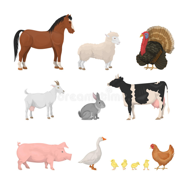 Farm animals set. vector illustration