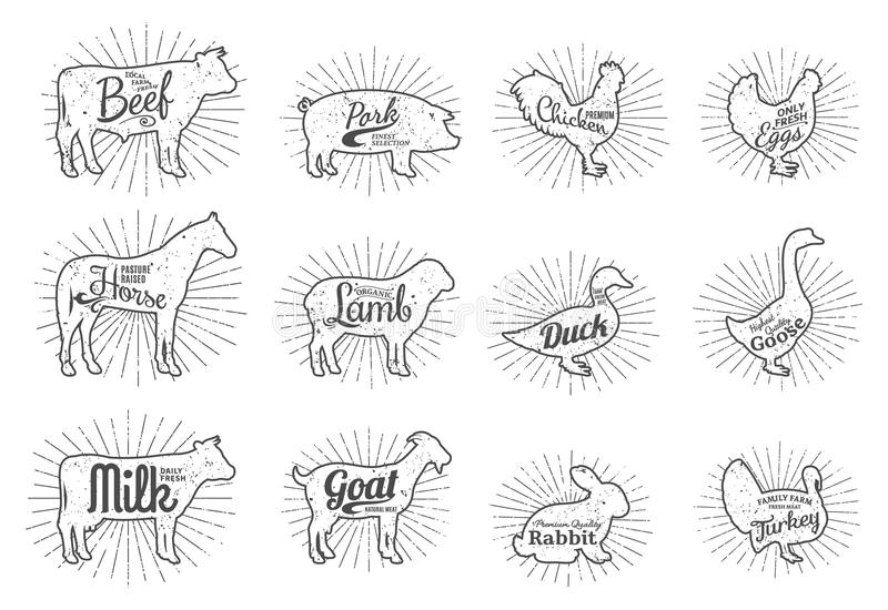 Farm Animals Silhouettes Collection, Butchery Labels Templates. Set of butchery logo templates. Farm animals with sample text. Retro styled farm animals stock illustration