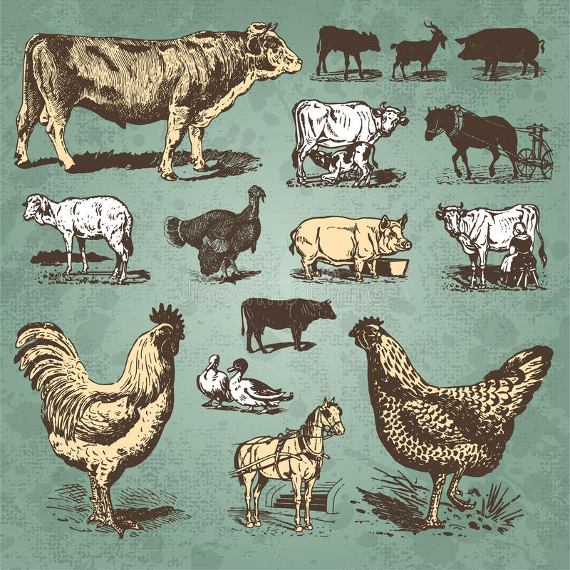 Free Farm Animals Vintage Set (vector) Stock Photography - 14334422