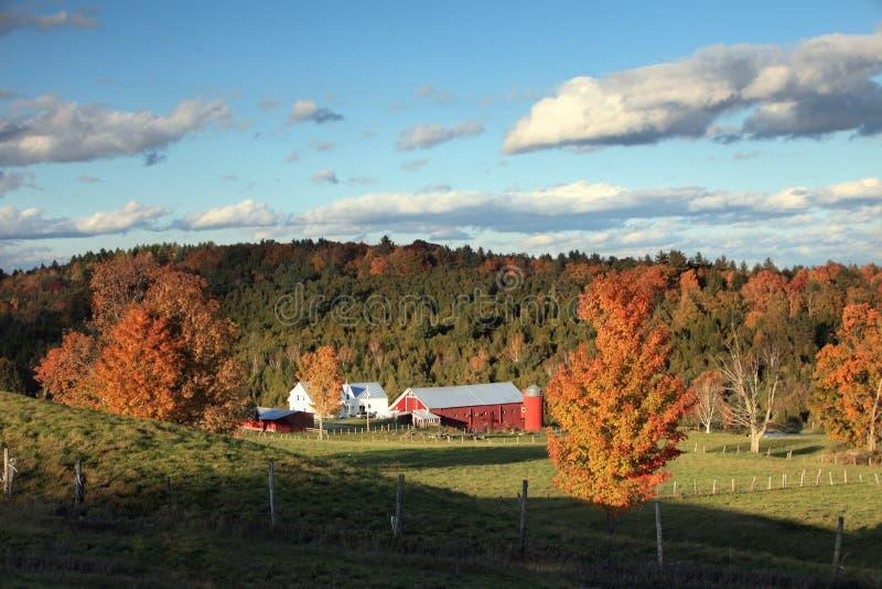 Farm In Autumn stock photography