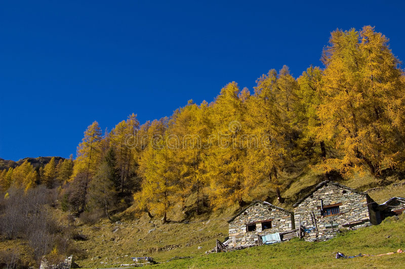 Download Farm in autumnal mountain stock photo. Image of quaint - 3551268