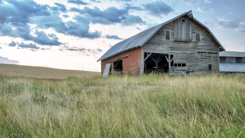 Farm barn in a field of grass