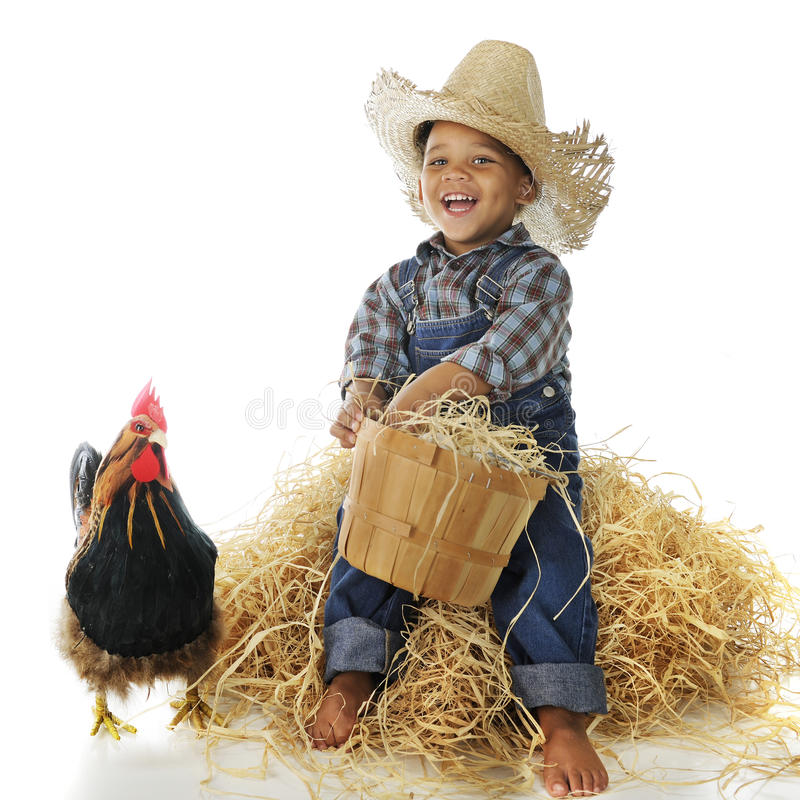 Download Farm Boy stock image. Image of adorable, basketful, person - 28406253