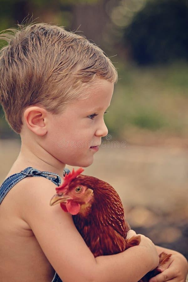 Farm boy with chicken. Farm boy chicken profile thinking stock image