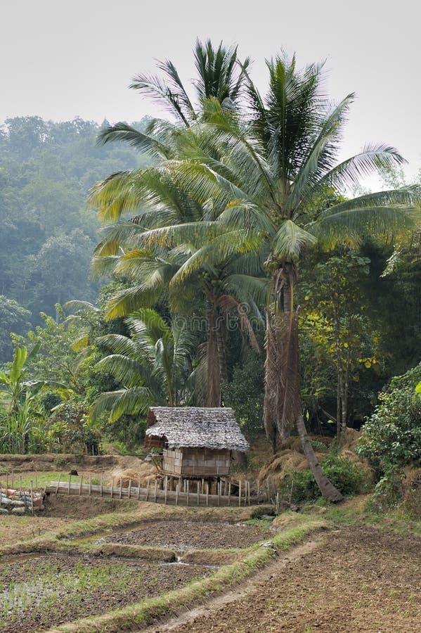 Farm building, Thailand. Farm building in the distance, Thailand stock photos