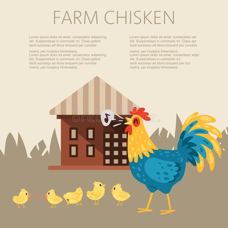 Farm chicken characters. Singing rooster banner vector flat illustration. Cute and funny hens. Cock looking after chicks vector illustration